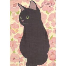 Jetoy - Black Cat