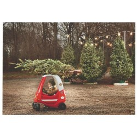 Eerste kerstboom