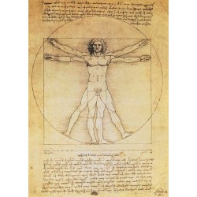 Leonardo da Vinci - Vitruviusman