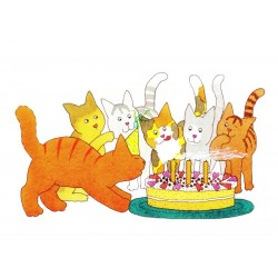 Dikkie Dik - Birthday