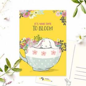 Studio Draak - Bloom