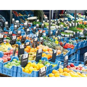Groenteboer Nederland