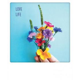 Pickmotion  - Love life