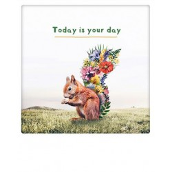 Pickmotion  - Today is your day