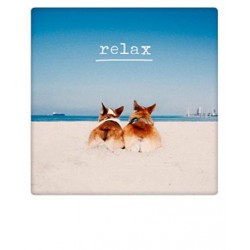 Pickmotion  - Relaxing on the beach