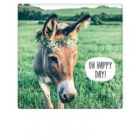 Pickmotion  - Happy donkey