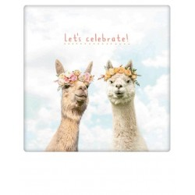 Pickmotion - Let's celebrate