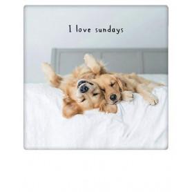 Pickmotion - I love Sundays