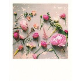 Polacard - Rustic Roses