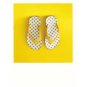 Polacard - Flip Flop