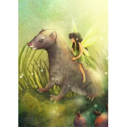 Veera Aro - Fairy and Ferret
