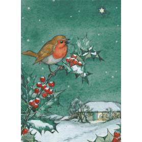 Molly Brett - A robin on a branch