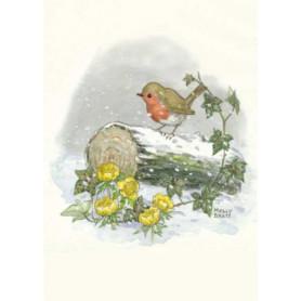 Molly Brett - Winter robin