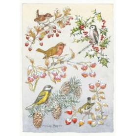 Molly Brett - Five birds