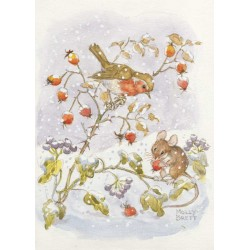 Molly Brett - Robin and mouse in the snow
