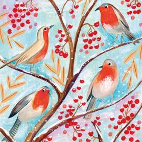 Edition Gollong - Winter robin