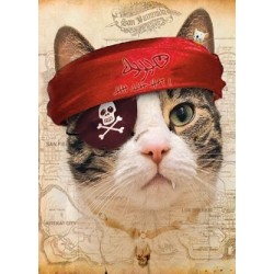 Captain Miaow