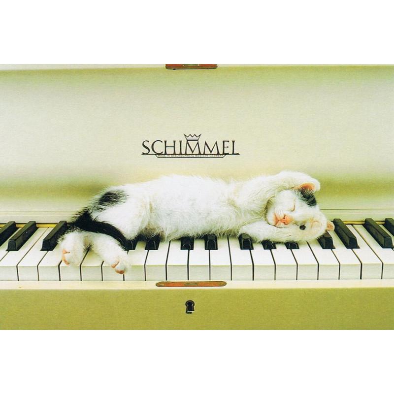 Pianokat