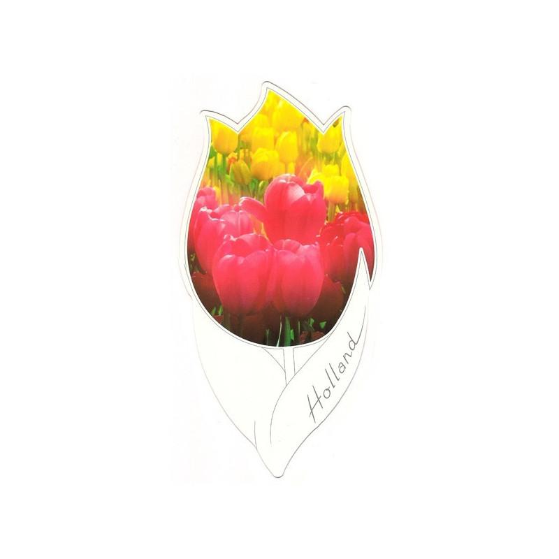Tulpkaart 107