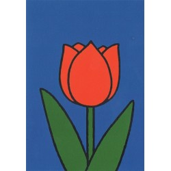 Dick Bruna - Tulp