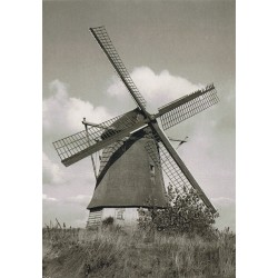 Molen, black & white