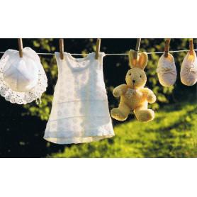 Teddybeer aan waslijn