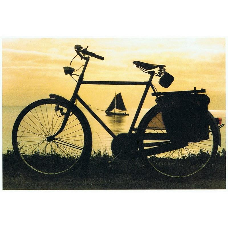 Door het oog van de fiets