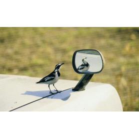 Spiegeltje, spiegeltje...