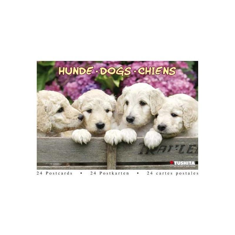 Postcardbook Honden