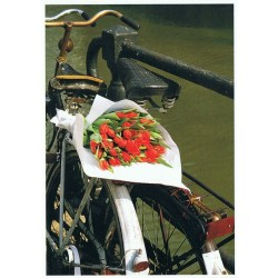 Tulips on the bike