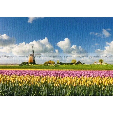 Lente in Holland