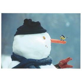 Pimpelmees met sneeuwpop