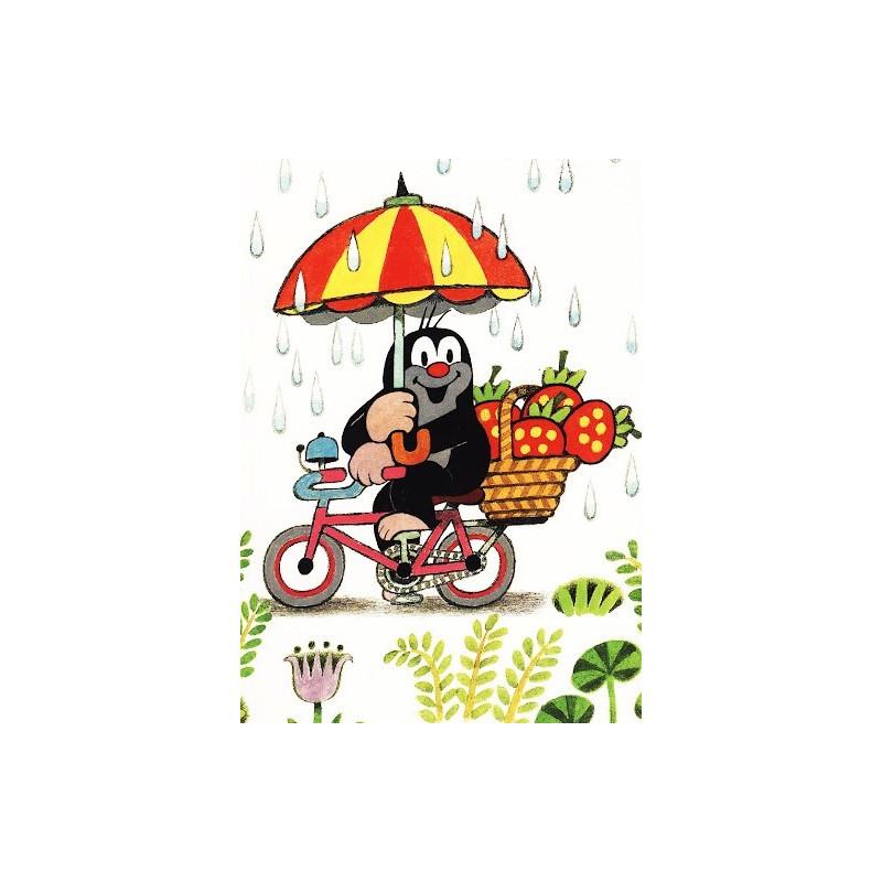 Krtek - op de fiets