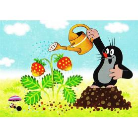 Krtek - tuinieren