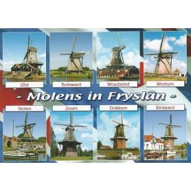 Molens Friesland
