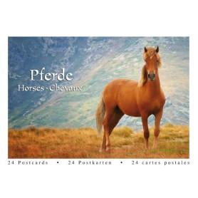 Postcardbook Paarden