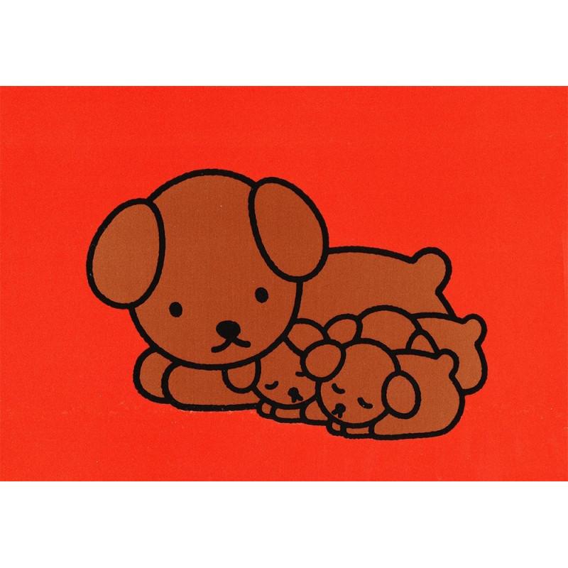 Nijntje - Snuffie met pups