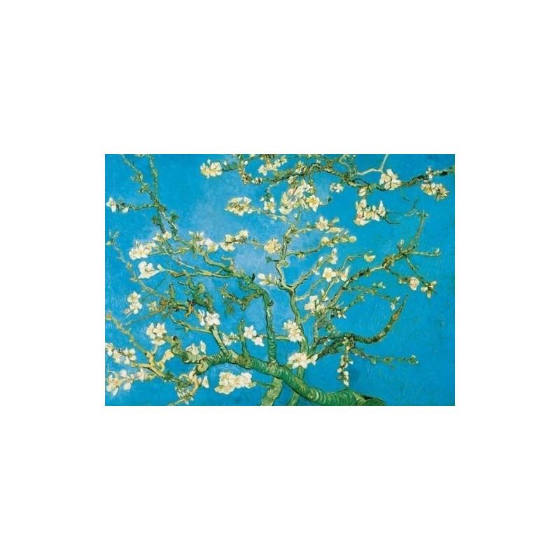 Vincent van Gogh - Amandier en fleurs