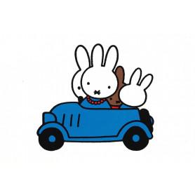 Nijntje - in de auto
