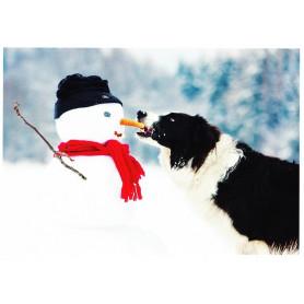 Sneeuwpop en hond