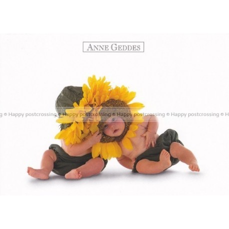 Anne Geddes - Two Sunflowers