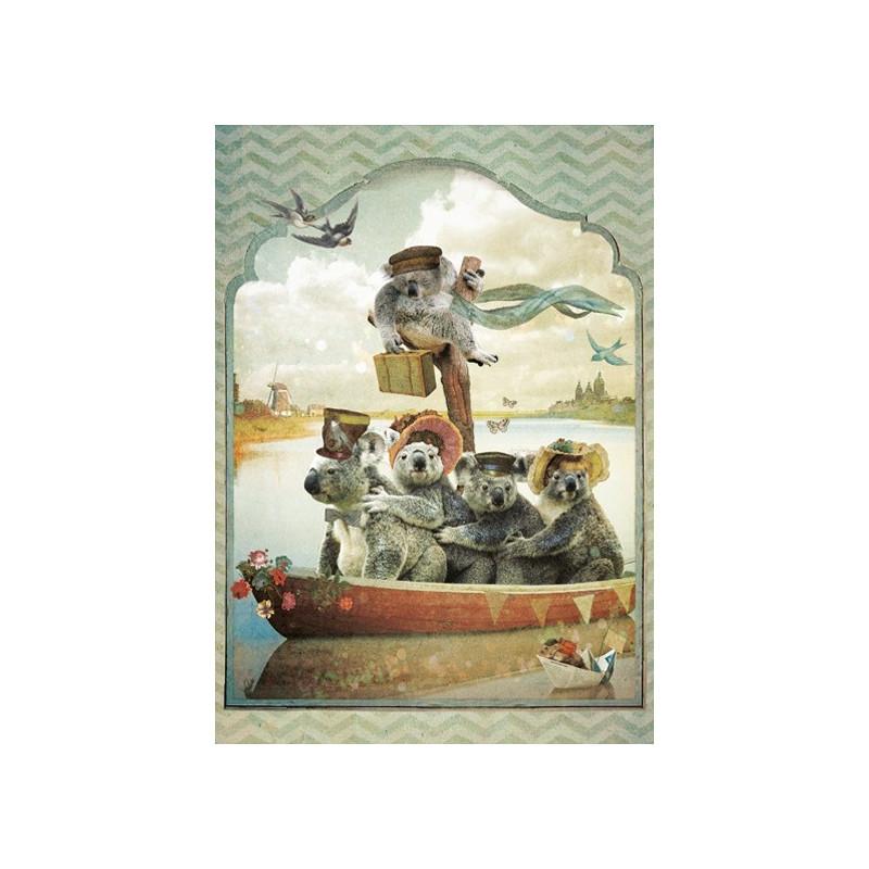 Koala's op reis