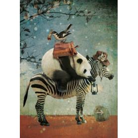 Panda op avontuur