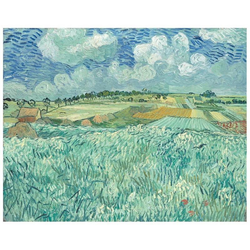 Vincent van Gogh - Plain near Auvers