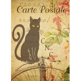 Carte Postale - Cat