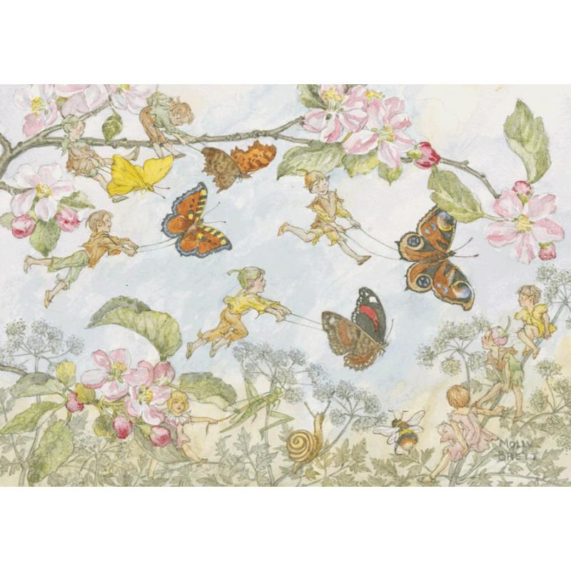 Molly Brett - Butterfly race
