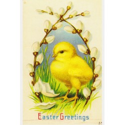 Cutest Easter Greetings
