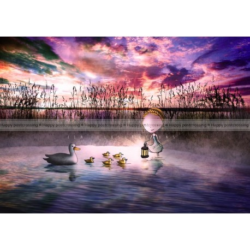 Ila Illustrations - Ducklings