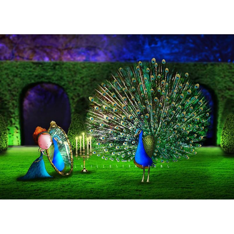 Ila Illustrations - Peacock