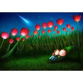 Ila Illustrations - Tulips